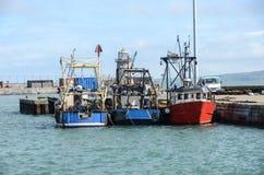 Pescherecci in porto Immagini Stock