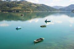 Pescherecci sul lago Zlatar in Serbia Immagini Stock Libere da Diritti
