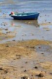 Peschereccio blu a bassa marea Fotografia Stock Libera da Diritti
