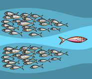 Peschi andare contro la marea Immagine Stock