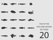 Peschi i mari e gli oceani messi delle icone piane Illustrazione di vettore Illustrazione di Stock