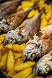 Peschi lo sparus aurata per cuocere con le patate ed i verdi Fotografia Stock