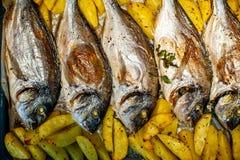 Peschi lo sparus aurata per cuocere con le patate ed i verdi Immagine Stock Libera da Diritti