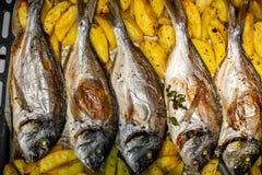 Peschi lo sparus aurata per cuocere con le patate ed i verdi Fotografie Stock