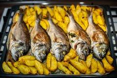 Peschi lo sparus aurata per cuocere con le patate ed i verdi Immagini Stock Libere da Diritti