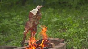 Peschi su un fuoco aperto la vista laterale stock footage
