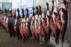 Peschi su una corda in un villaggio di confine della Cina Russia immagine stock libera da diritti