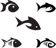 Pesci. Immagini Stock Libere da Diritti