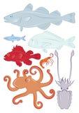 pesci Fotografia Stock