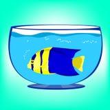 Pesci in acquario Immagine Stock Libera da Diritti