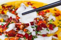 Pesci affettati in olio del peperoncino rosso caldo Immagini Stock