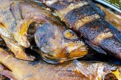 Pesci affumicati caldi Fumo Carne affumicata Pesce affumicato Stanza di fumo cucinata al palo pertica Priorità bassa affumicata d fotografia stock libera da diritti