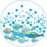 Pesci & bolle blu royalty illustrazione gratis