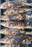 Pesci arrostiti 1 della sardina Fotografie Stock Libere da Diritti