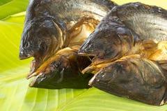 Pesci asciutti sulla foglia fresca della banana Fotografie Stock