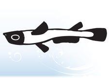 Pesci astratti Fotografia Stock Libera da Diritti