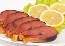 Pesci cartilaginosi. Immagine Stock