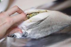 Pesci con le verdure Fotografia Stock Libera da Diritti