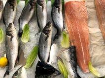 Pesci CONGELATI O pesce nel ghiaccio Frammento dal deposito del pesce fotografie stock