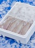 Pesci in contenitore di ghiaccio Immagine Stock Libera da Diritti