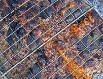 Pesci cotti rossi che cucinano sulla griglia del metallo, picnic, Fotografie Stock Libere da Diritti