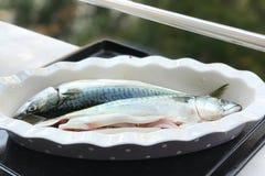 Pesci crudi con la cipolla e l'olio Immagini Stock Libere da Diritti