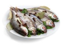 Pesci crudi marinati Immagini Stock
