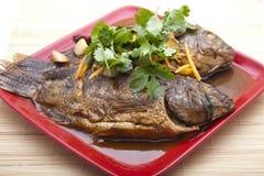Pesci cucinati immagini stock libere da diritti