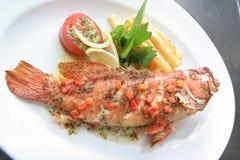 Pesci cucinati dell'epinefolo Fotografia Stock Libera da Diritti