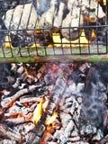 Pesci del barbecue Fotografie Stock