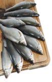 Pesci del fiume, triotto sulla scheda della cucina sopra bianco Immagini Stock Libere da Diritti