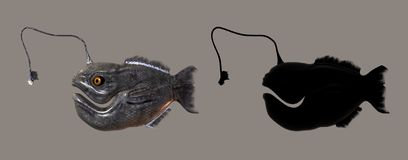 Pesci del mostro Immagine Stock