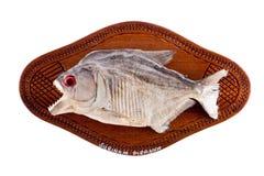 Pesci del Piranha come il trofeo su legno ha isolato Fotografia Stock Libera da Diritti