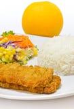Pesci della frittella ripiena su bianco del piatto Fotografie Stock