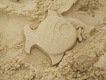 Pesci della sabbia Immagine Stock