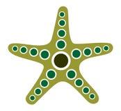 Pesci della stella Immagini Stock