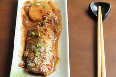 Pesci di alimento giapponesi Fotografie Stock Libere da Diritti