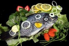 Pesci di Crucian Fotografie Stock
