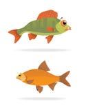 Pesci di mare di vettore Immagine Stock