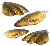 Pesci di mare freschi rassodati Fotografia Stock