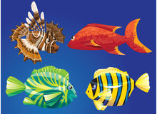 Pesci di mare rossi Immagini Stock