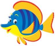 Pesci di mare tropicali Fotografie Stock