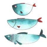Pesci divertenti dell'acquerello Fotografia Stock Libera da Diritti