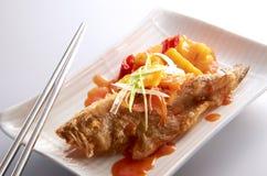 Pesci domestici del cuoco fotografie stock