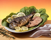 Pesci e carne Immagine Stock Libera da Diritti
