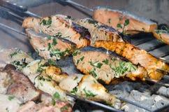 Pesci e carne che ottengono cucinati sul barbecue Fotografia Stock Libera da Diritti