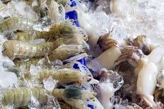 Pesci e frutti di mare immagini stock libere da diritti