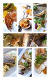 Pesci e frutti di mare Fotografie Stock