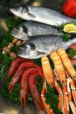 Pesci e frutti di mare mediterranei Fotografia Stock