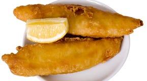 Pesci e limone avariati birra Immagine Stock Libera da Diritti